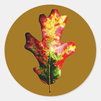 Hoja colorida del roble del otoño pegatina redonda