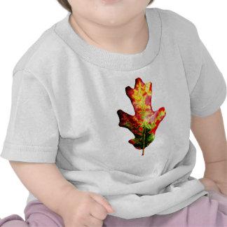 Hoja colorida del roble del otoño camisetas