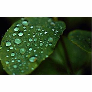 Hoja con las gotas de agua fotoescultura vertical