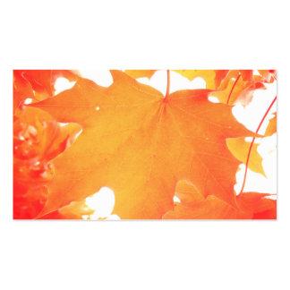 Hoja de arce anaranjada teñida plantilla de tarjeta de negocio