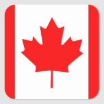 Hoja de arce canadiense colcomanias cuadradas