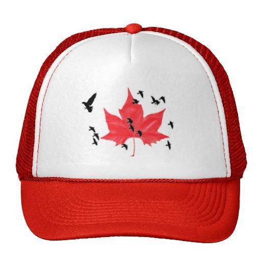 Hoja de arce canadiense con las palomas gorros