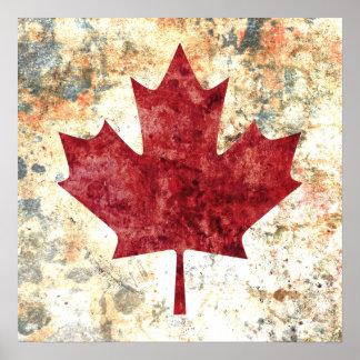 Hoja de arce canadiense poster
