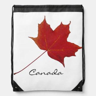 Hoja de arce canadiense roja