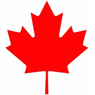 Hoja de arce de Canadá Fotoescultura Vertical