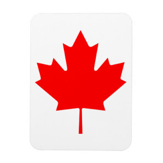 Hoja de arce de Canadá Imán Rectangular
