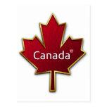 Hoja de arce de Canadá Postales