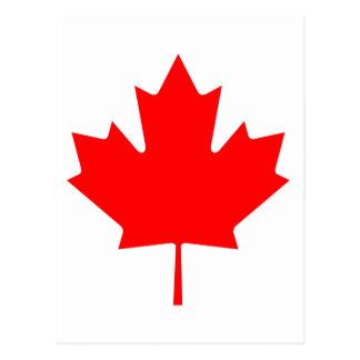 Hoja de arce de Canadá Tarjetas Postales