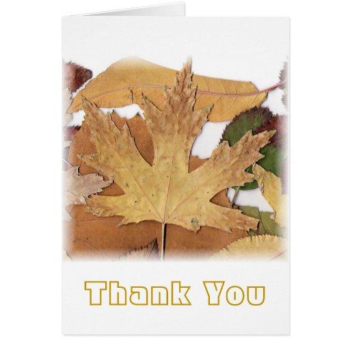 Hoja de arce del follaje de otoño tarjeta de felicitación