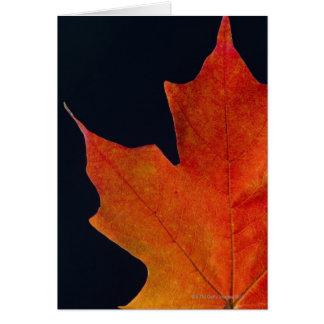 Hoja de arce del otoño en fondo negro felicitaciones