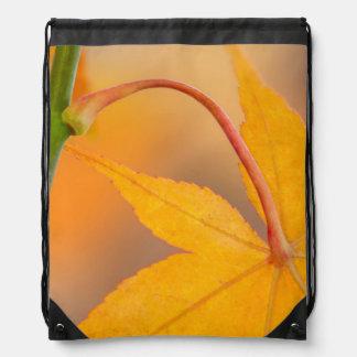 Hoja de arce en otoño mochilas