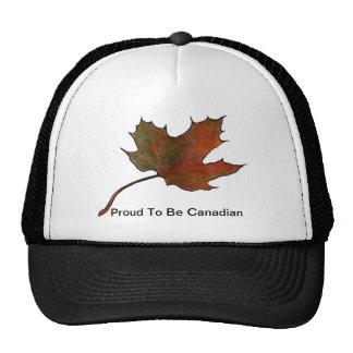 Hoja de arce: Orgulloso ser canadiense: Ilustracio Gorras
