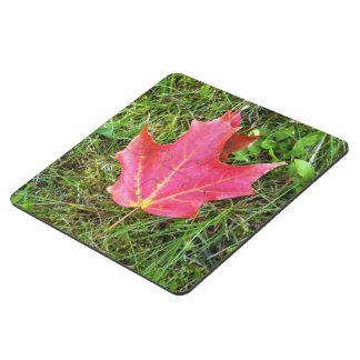 Hoja de arce roja en hierba posavasos de puzzle