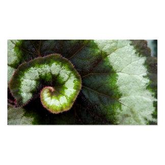Hoja de la begonia del caracol plantillas de tarjetas de visita