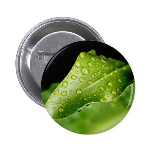 Hoja de la gota de lluvia pins