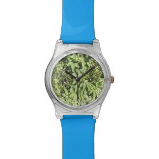 Hoja de la planta relojes de mano