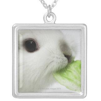 Hoja de mordisco de la lechuga del conejo, primer colgante cuadrado