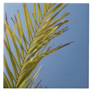 Hoja de palma azulejo ceramica
