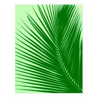 Hoja de palma - esmeralda y verde lima tarjetas postales