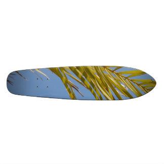 Hoja de palma tablas de patinar