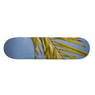 Hoja de palma patineta personalizada