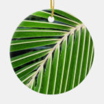 Hoja de palma verde abstracta adorno para reyes