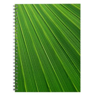 Hoja de palma verde abstracta colorida libros de apuntes con espiral