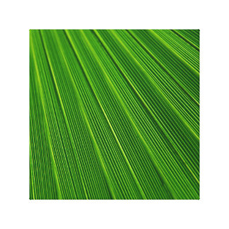 Hoja de palma verde abstracta colorida impresión en tela