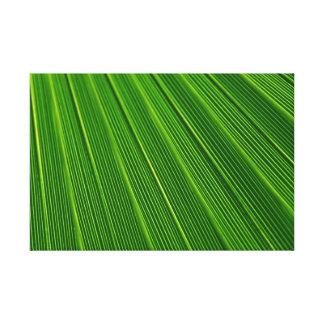 Hoja de palma verde abstracta colorida impresión de lienzo