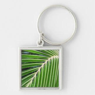 Hoja de palma verde abstracta llavero