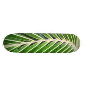 Hoja de palma verde abstracta monopatines personalizados
