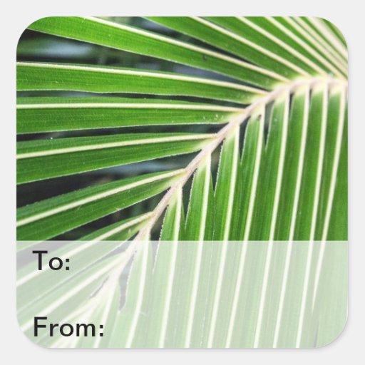Hoja de palma verde abstracta pegatinas cuadradases