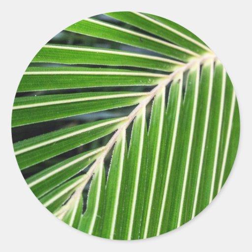 Hoja de palma verde abstracta pegatina redonda