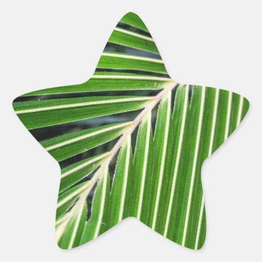 Hoja de palma verde abstracta calcomania cuadrada personalizada