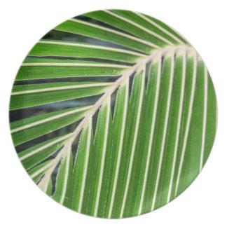Hoja de palma verde abstracta plato de cena