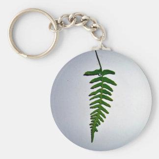 Hoja de palma verde clara aislada en el backgroun llaveros personalizados
