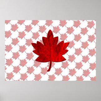 Hoja del Canadá-Arce Poster