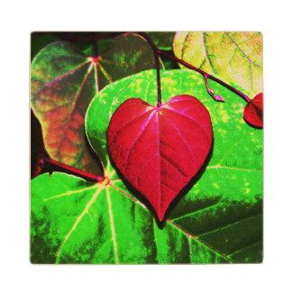 Hoja del corazón de Redbud Posavasos De Madera