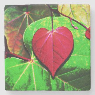 Hoja del corazón de Redbud Posavasos De Piedra