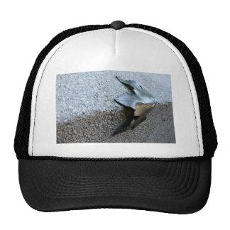 Hoja del metal gorras de camionero