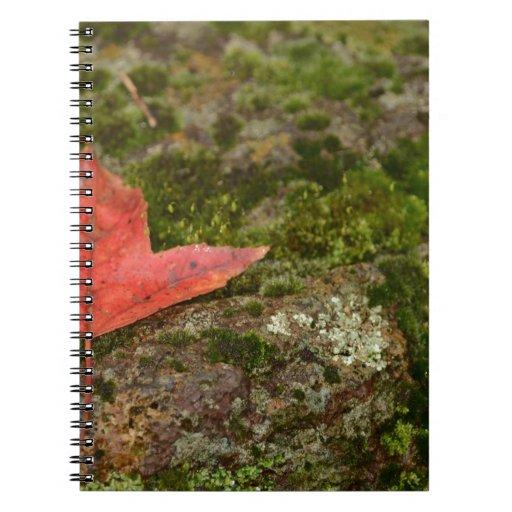 hoja del otoño cuaderno