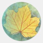 Hoja del otoño del arce del sicómoro pegatinas redondas