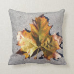Hoja del otoño en la almohada de tierra