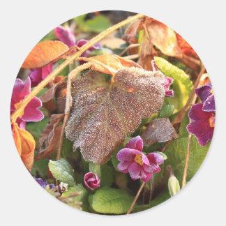 hoja del otoño en primavera temprana pegatina redonda