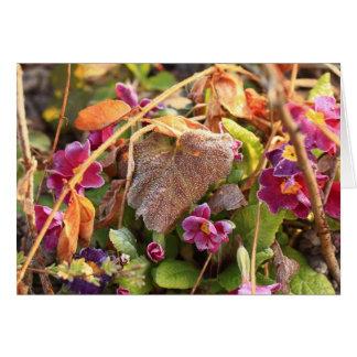 hoja del otoño en primavera temprana tarjeta pequeña