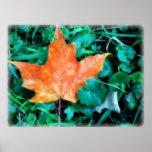Hoja del otoño impresiones