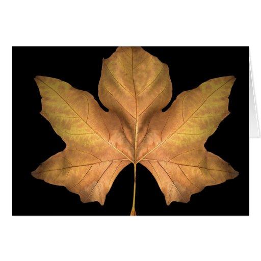 Hoja del otoño tarjeta de felicitación