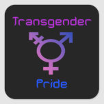 Hoja del pegatina del orgullo del transexual