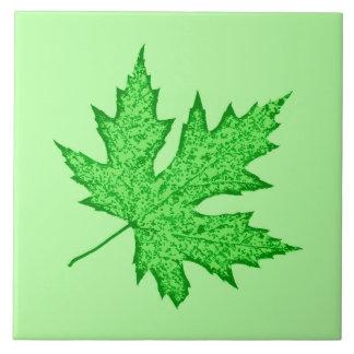 Hoja del roble - sombras del verde azulejos