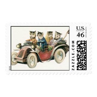 Hoja del sello del coche del gato